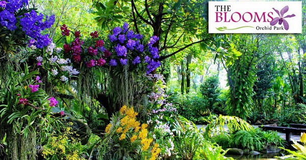 The Blooms Orchid Park (อ.บางแพ)